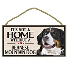 Imagine This Wood Sign for Bernese Mountain Dog Breeds