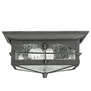 Home Decorators Collection Flushmount 2-Light Outdoor Aged Iron Lantern