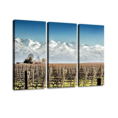 7houarts Vineyard in Winter Canvas Wall Artwork Poster Modern Home Wall Unique Pattern Wall Decoration Stretched and Framed - 3 Piece