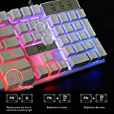 Rii RK100+ White Gaming Keyboard,USB Wired Multiple Colors Rainbow LED Backlit Large Size Mechanical Feeling Ultra-Slim Multimedia Office Keyboard Non-Slip for Primer Gaming and Working,Office Device