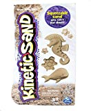 Kinetic Sand - 3lb Brown Sand by Spin Master - Wacky-Tivities