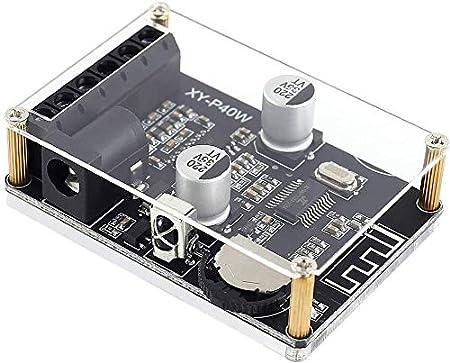 DollaTek Placa amplificadora Bluetooth 5.0 20W 30W 40W Módulo estéreo Receptor de Audio Digital inalámbrico de Doble Canal con Control Remoto y Caja de acrílico para Bricolaje