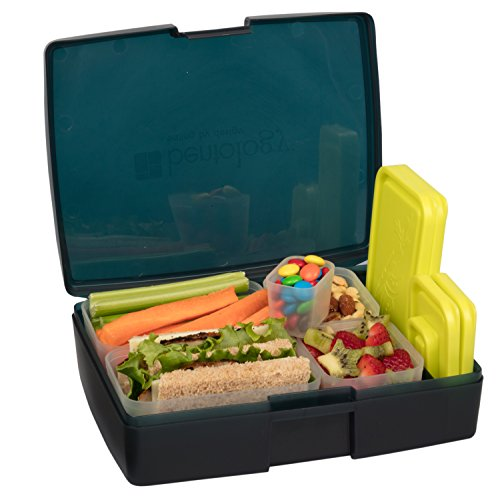 Bentology Leak-proof Bento Lunch Box with 5 Removable Containers, Translucent Midnight