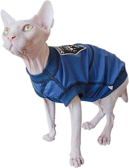 JLCYYSS Gato sin Pelo Moda y Gatos geniales Suéter Jersey Ropa para Mascotas de Punto, Gatos y Ropa para Perros pequeños: Amazon.es: Productos para mascotas
