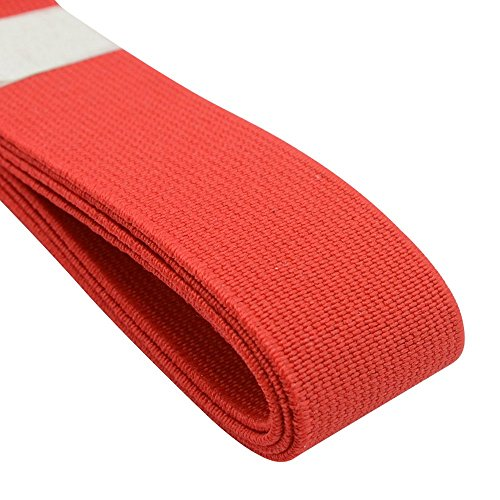 iCraft 1-Inch Wide by 3-Yard Colored Elastic Band,Red 72150 ()