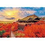 1000ピースジグソーパズル秋色に染まる清水寺(49×72cm)