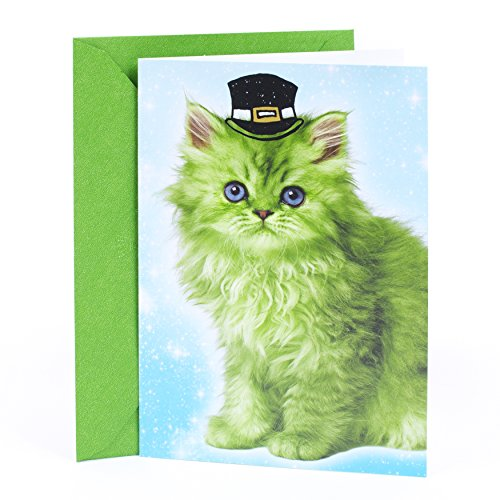 (Hallmark Shoebox Funny St. Patricks Day Card (Leprechaun Kitten))