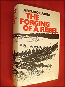 Book Forging of a Rebel
