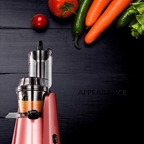 DULPLAY Large Diameter Juicer Juice Extractor,Bpa Free Premium Food Grade Stainless Steel Dual Speed Setting Juicer Machine,Bpa Free-Pink by DULPLAY (Image #3)