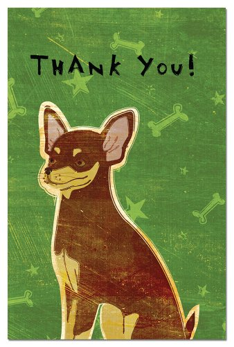 Tree-Free Greetings Eco-Notes Thank You Card Set, 4 x 6 Inches, 12-count Cards with Envelopes, Chocolate and Tan Chihuahua (92981)
