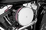 Arlen Ness 18-790 Chrome Big Sucker Stage II Air Filter Kit with Cover