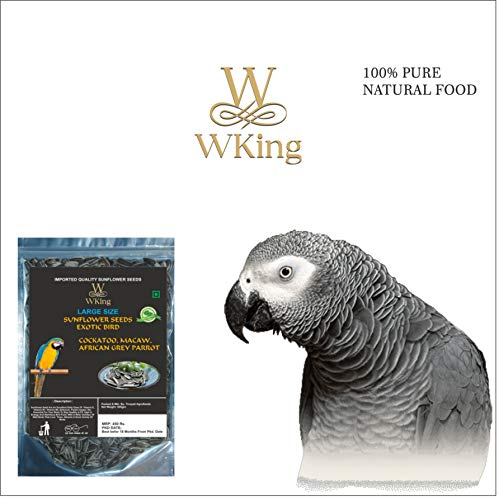 WKING Large Size Sunflower Seeds Exotic Bird Food for Cockatoo, Macaw, African Grey Parrot (500 gm)