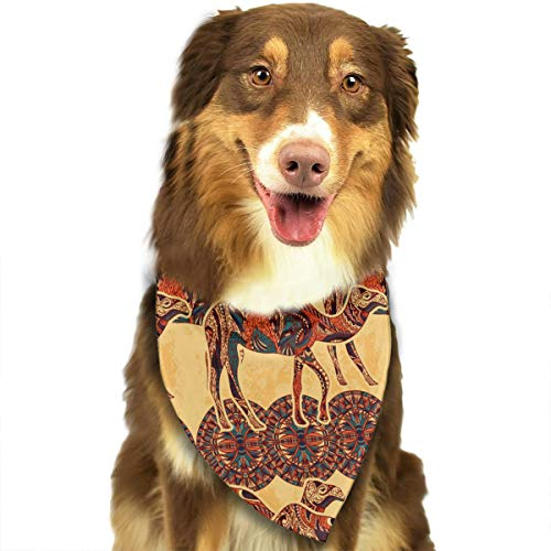 FRTSFLEE Dog Bandana Camel Egypt Colorful Floral Scarves Accessories Decoration for Pet Cats and Puppies ()