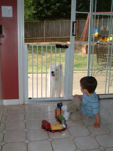 Cardenal Gates Lock-n-Block Puerta corredera Puerta 30,48 x 60,96 cm, Color Blanco: Amazon.es: Productos para mascotas