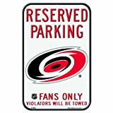 NHL Carolina Hurricanes 11-by-