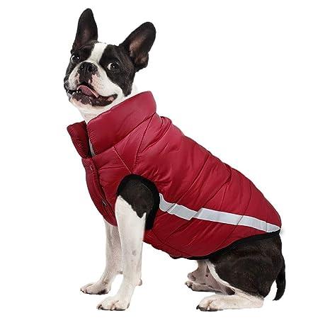 TYJY Ropa para Perros De Invierno Pug Reflectante Abrigo para Mascotas Algodón Perros Ropa De Chaqueta