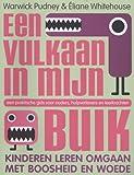 Een vulkaan in mijn buik: kinderen leren omgaan met boosheid en woede : een praktische gids voor ouders, hulpverleners en leerkrachten (Dutch Edition)