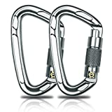 Aitey Rock Climbing Carabiner, 28KN D-rings Aviation Aluminum Auto Locking Carabiner, Climbing Hook Chip for Camping, Hammock, Climbing, Hiking and More Heavy Hanging (2 pack)