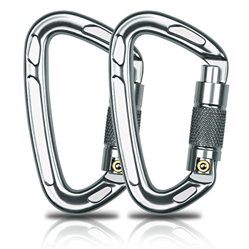 Aitey Rock Climbing Carabiner, 28KN D-rings Aviation Aluminum Auto Locking Carabiner, Climbing Hook Chip for Camping, Hammock, Climbing, Hiking and More Heavy Hanging (2 pack) by Aitey