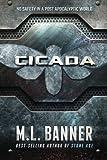 Cicada: A Stone Age World Novel (Stone Age Series) (Volume 3)