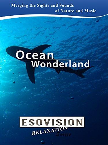 Esovision: Relaxation Series - Ocean Wonderland