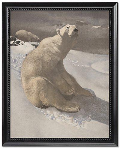 (Black Wood Framed Print 11x14: A Polar Bear Seated On Snow And Another Polar Bear Walking...)