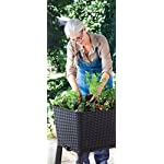 Keter Elevated Garden Bed 15 Dimensions: 44. 9 in. W x 19. 4 in. D x 29. 8 in. H Easy to read water gauge indicates when plants need additional moisture Drainage system that can be opened or closed for full control of watering