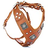 Bestia ''EROS'' genuine leather dog harness, Large breeds, cane corso, Rottweiler, Boxer, Presa, Bullmastiff, Dogo, Top Quality, 100% leather, studded, L- XXL size, soft padded. Made in Europe!