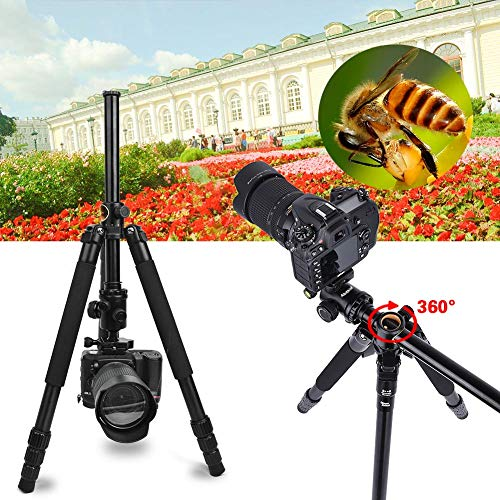 Camera Tripod & Monopod for DSLR, 62'' Professional Horizontal Arm Tripod with 360° Rotatable Metal Ball Head, 4 Sections Compact Aluminum Alloy Tripod for for Canon Nikon Sony Olympus Fuji Projector.