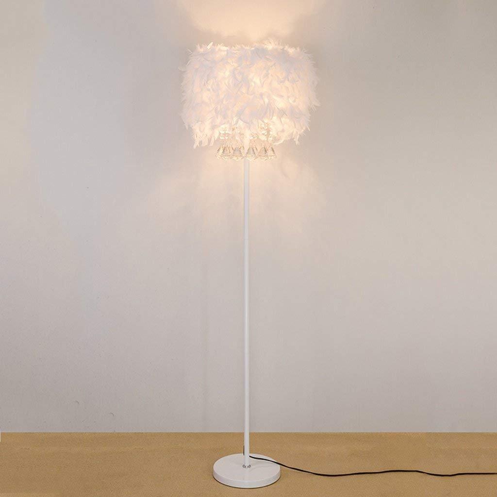 Dsj Stehlampe Kristall Stehlampe Feder Stehlampe Einfache Moderne