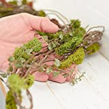 4 Feet of Artificial Soft Green Moss, Woodland Fern and Twig Garland for Home Decor, Crafting and Embellishing