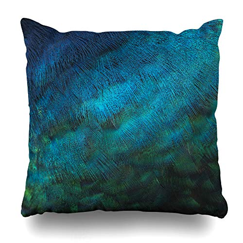 - KJONG Feather Peacock Beautiful Bird Bright Elegant Feather Zippered Pillow Cover,18 x 18 inch Square Decorative Throw Pillow Case Fashion Style Cushion Covers(Two Sides Print)