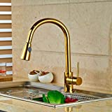 FZHLR Gold Brass Vessel Sink Mixer Tap Kitchen Faucet Single Handle Hole Deck Mounted 360 Degree Swivel Hot And Cold Water Kitchen Sink Faucet