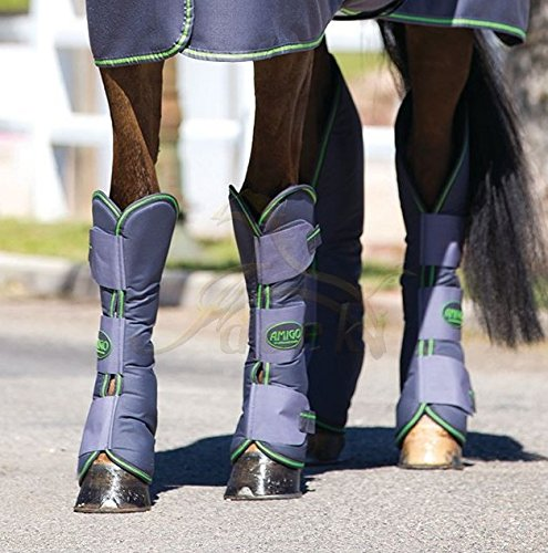 Horseware Amigo Travel Boots - Excal & Green / Transportgamaschen, Groesse:Vollblut (M)