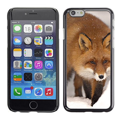 Premio Sottile Slim Cassa Custodia Case Cover Shell // V00003315 fox hiver // Apple iPhone 6 6S 6G PLUS 5.5""