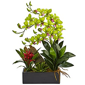 Nearly Natural Dendrobium Orchid and Bromeliad Silk Arrangement, Green 5