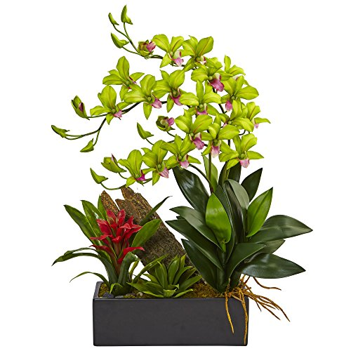 Dendrobium Silk Orchid Arrangement - Nearly Natural Dendrobium Orchid and Bromeliad Silk Arrangement, Green