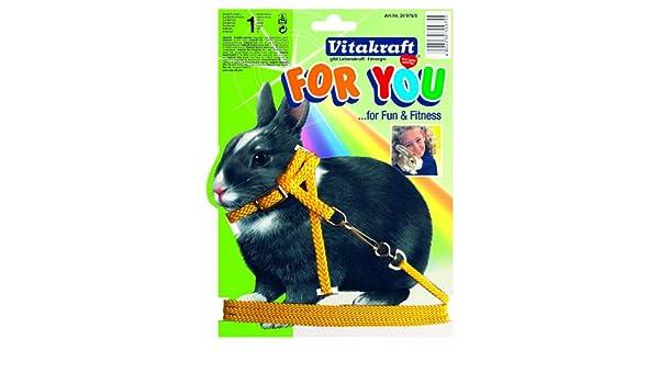 Vitakraft 1571260031 - arnés para Conejos: Amazon.es: Productos ...