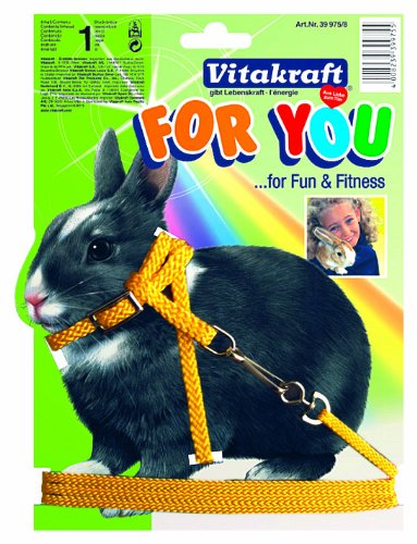 Vitakraft 1571260031 - arnés para Conejos: Amazon.es: Productos ...