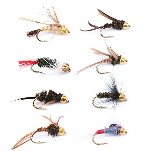 M MAXIMUMCATCH Maxcatch 12pcs Dry/Wet Fly Fishing Flies Kit Assortment (Gold Head Nymph Flies)