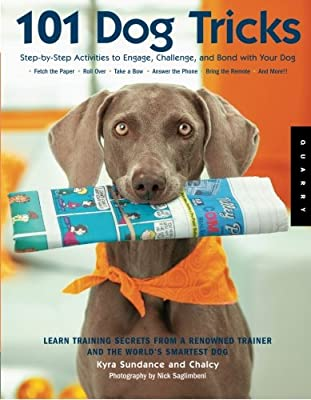101 Dog Tricks: Step by Step Activities to Engage, Challenge, and Bond with Your Dog from Quarry Books