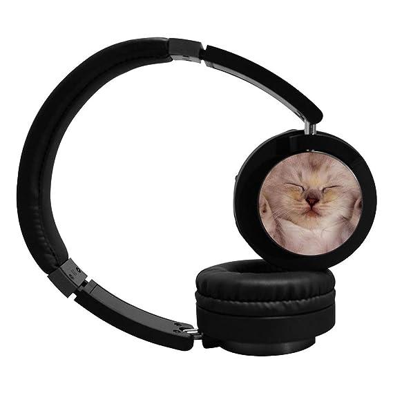 Amazon com: Bluetooth Headphones Sleep Cat Kitten Noise