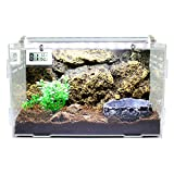 Dalle Craft Acrylic Artificial Landscape Reptile Terrarium 'Landscape of Bushes with Food Tray' for Amphibians or Larvae