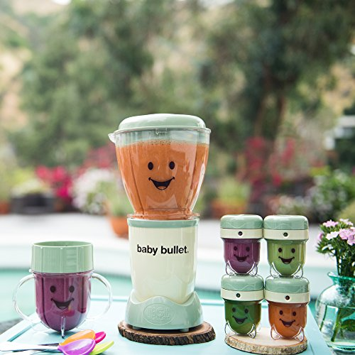 Magic Bullet Baby Bullet Baby Care System Deals From