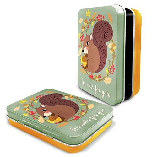 - Buzzzz Woodland Red Squirrel Tin - I'm Nuts for You - Small General Purpose Metal Lidded Tin - 11cm