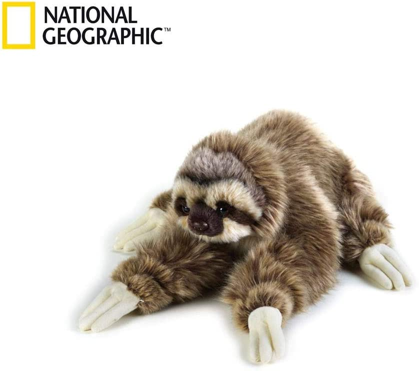 National Geographic Sloth Plush - Medium Size