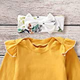 Toddler Baby Girls Fall Outfit Long Sleeve Ruffle
