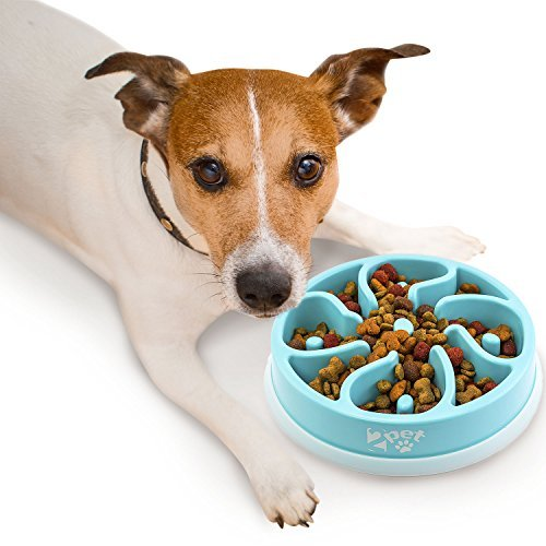 2PET Slow Feed Dog Bowl Slowly Bowly Fun Interactive Dog Dish for Fast Eaters. Prevent Bloating. Fun to Use Dog Bowl. Cat Feeder Friendly. [Skid Protection Upgraded] (Kygen Dog Slow Feeder)