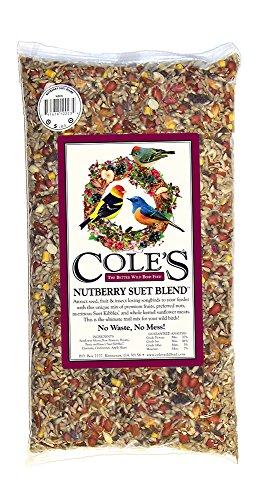 Cole's NB10 Nutberry Suet Blend Bird Seed, 10-Pound (Best Price On Wild Bird Seed)