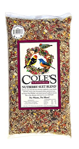 Cole's NB20 Nutberry Suet Blend Bird Seed, 20-Pound